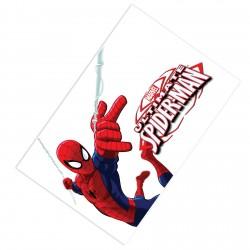 Çizgi Karakter Spiderman Erkek Çocuk  Halısı-CE182